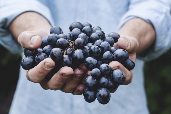 4 Manfaat Anggur untuk Kesehatan yang Wajib Kamu Ketahui!
